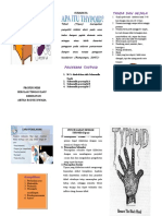 Leaflet Typoid