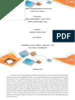 Actividad_Colaborativa_Unidad 2 Paso 3 Propuesta