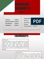 PPT Fl V KEL.5 3.pptx