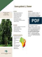 Site Arvores Ficha 36 Guarea Guidonea