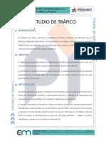 ESTUDIO DE TRAFICO.docx