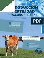 Reproduccion Vacuno Carne