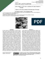 Necesidades hídricas del frijol (Phaseolus vulgaris L.) INTA rojo en condiciones del trópico húmedo de Nicaragua