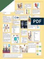 Infografía-Enfoque sistémico