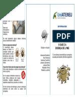 Folder Doenca de Lyme