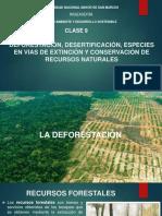 CLASE 9 DEFORESTACIÓN, DESERTIFICACIÓN, ESPECIES EN VIAS DE.pdf