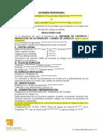 Modelo Dictamen - 163 Igj s.r.l. Dict Ref