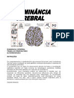 Dominancia Cerebral