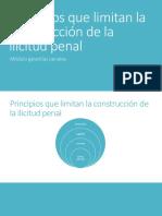 02 Principios que limitan la ilicitud.pdf