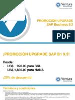 Upgrade SAP business one