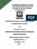 T.FRS-185.pdf
