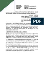 Ampliacion de Apelacion Ochoa Neyra