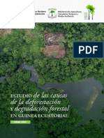 deforestaciion