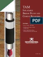 Inflatable Bridge Plugs & Cement Retainer.pdf