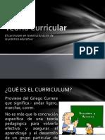 Qué Es El Curriculum.....Exposicion Teoria Curricular