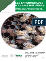 Las Enfermedades en las abejas Meliferas