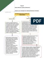 """""""Sistema Nervioso Central y Endocrino"""""""