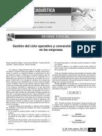 235000135-Gestion-Del-Ciclo-Operativo-y-Conversion-de-Efectivo-en-Las-Empresas.pdf