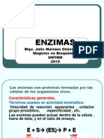 ENZIMAS CICLO 2019