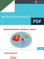 1. Microorganismos