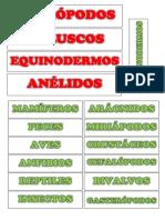 VERTEBRADOS - INVERTEBRADOS.docx