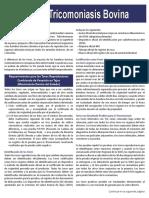 TAHCBrochure Trichomoniasis SPANISH