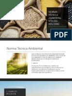 NORMA TÉCNICA AMBIENTAL NTA-IEG-005.pptx