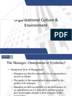 Organizational Culture Environment
