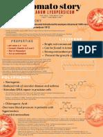 A Tomato Story (6)