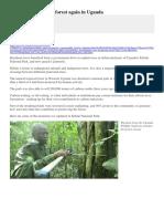 Kibale Reforestation