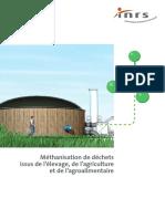 biomasse et biodigesteur
