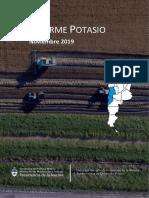 Informe Especial de Potasio - Noviembre 2019.pdf