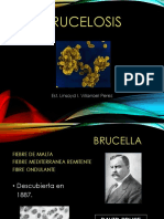 expo brucelosis.ppt