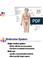 ENDOCRINE_SYS.pptx