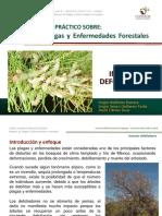 CURSO Insectos defoliadores 2015.pdf
