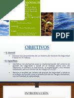 Administración de Programas de Higiene y Seguridad Industrial-PEÑA MORALES MABEL