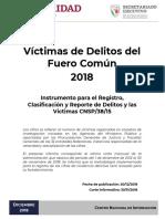 CNSP-Víctimas-2018