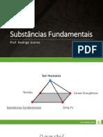 Substâncias Fundamentais_Rodrigo Soares.pdf