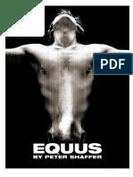 EQUUS-course-notes (1).doc