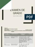 EXAMEN DE GRADO.pptx