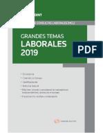 Grandes temas laborales 2019.docx
