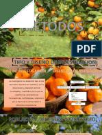 Diapos de Mandarina