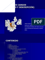 ANALISIS_DE_CARGOS.pdf
