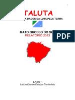 dataluta_ms_2013(1)