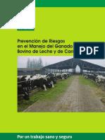 prevencion-de-riesgos-en-el-manejo-del-ganado-bovino.pdf