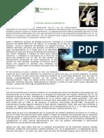 Dialnet-UnPasoMas-2348986.pdf