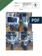 celu.pdf