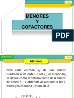 cofactores.pptx