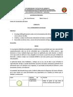 consulta BIZAGI.docx