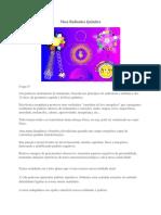 kupdf.net_mesa-radionica-quantica.pdf